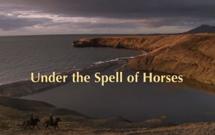 Under the Spell of Horses -Iceland